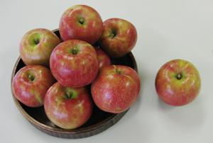 りんごの盛合わせ