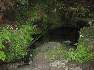 猿庫の泉源泉