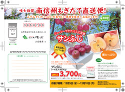 arai_pdf_20121122.jpg