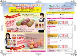 arai_pdf_20121122_2.jpg